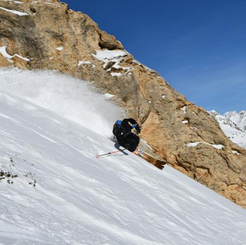 Ski en bois Allinwood